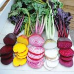 Vegetable seeds for 2014